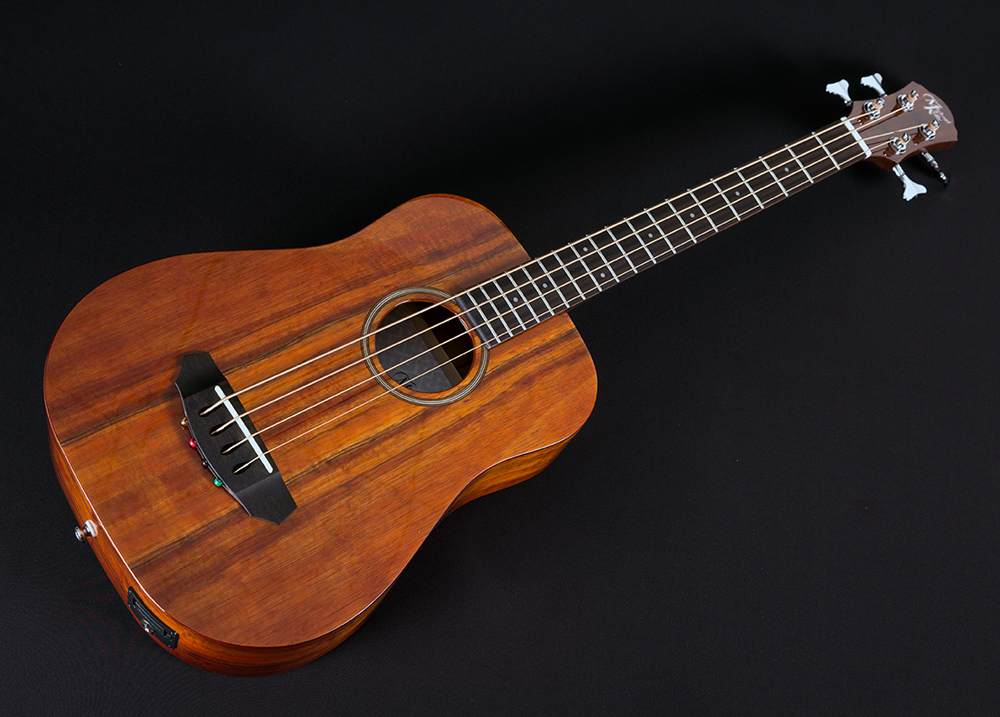 Sojourn 4K Acoustic Travel Bass