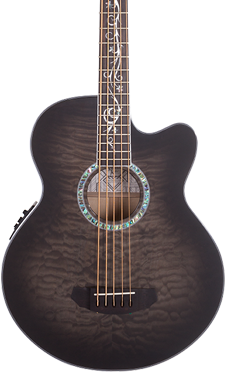 5 String Acoustic Bass Guitar