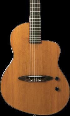 rick turner electric guitars michael kelly guitar co. Black Bedroom Furniture Sets. Home Design Ideas