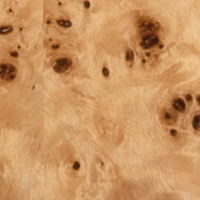 New guitars for NAMM 2016 - Burl 60 Stealth - Natural Burl