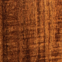 New guitars for NAMM 2021 - Sojourn Port Acoustic Travel Bass - Gloss Koa